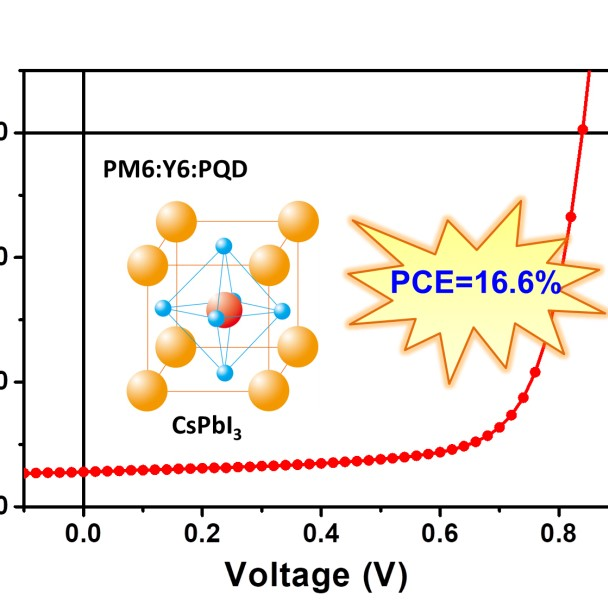 Xiaowei Zhan's group used perovskite quantum dots to